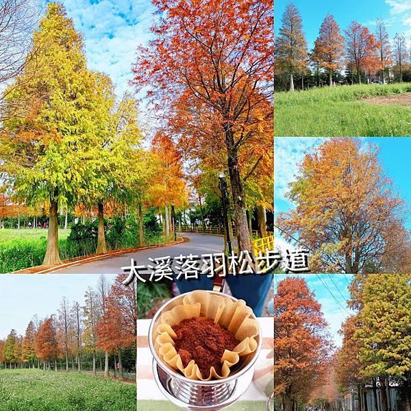 PhotoGrid_1546584914189.jpg