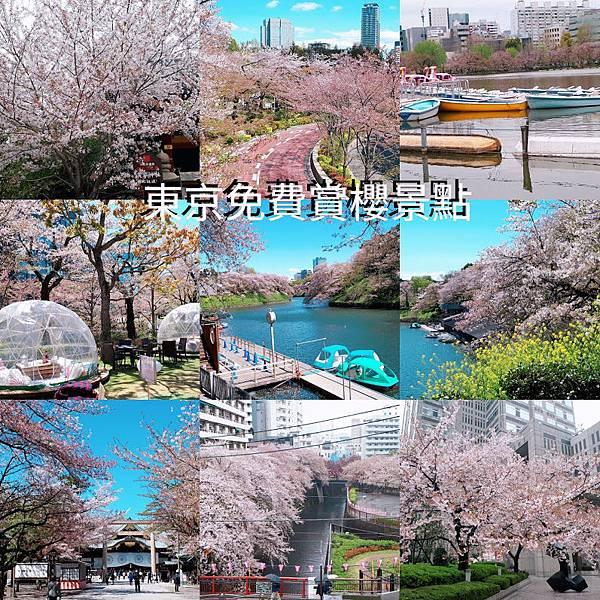 PhotoGrid_1555124657854.jpg