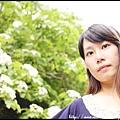 IMG_3541