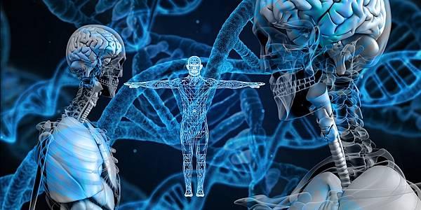 """人工智慧解決的生物圈最大謎團-""""蛋白質的折疊""""!?(下)"""