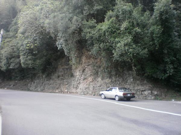 PA200333.JPG
