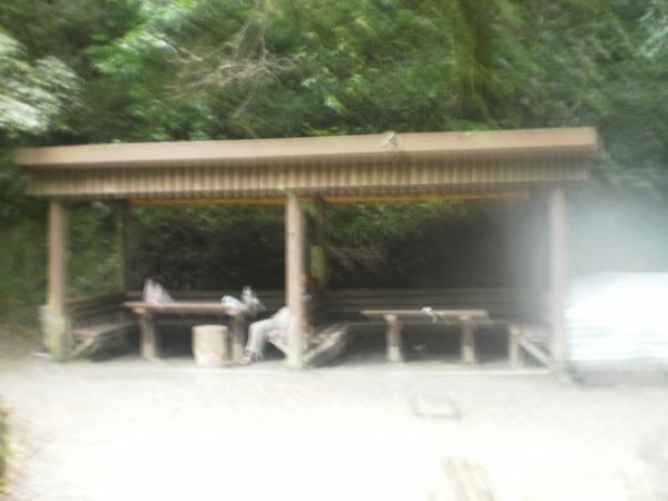 PA200536.JPG