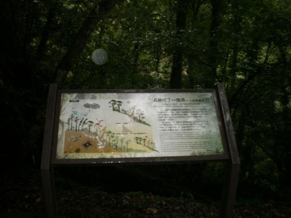 PA200546.JPG