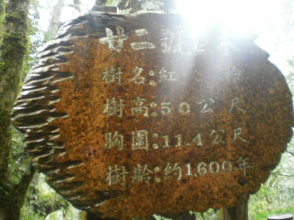 PA200547.JPG