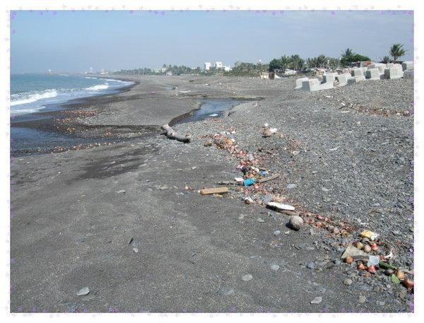海邊都是垃圾