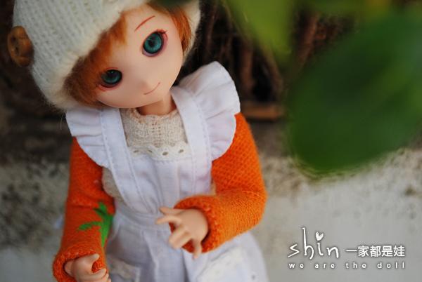 [Obitsu PARABOX] 冬天的陽光