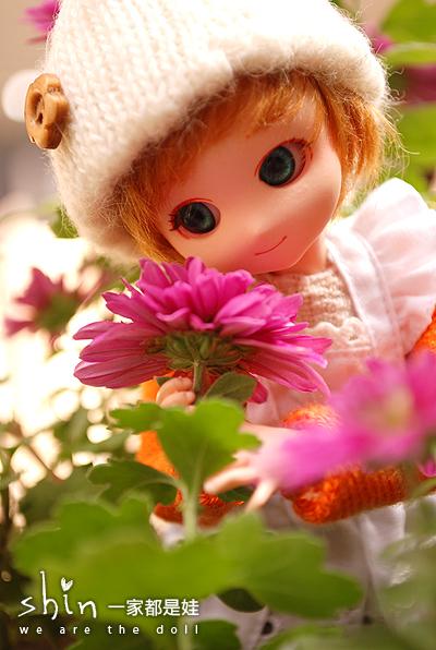 [Obitsu PARABOX] 花開了