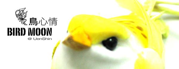 146_4647bird.jpg