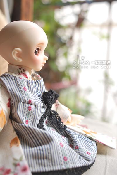DSC_8682.jpg