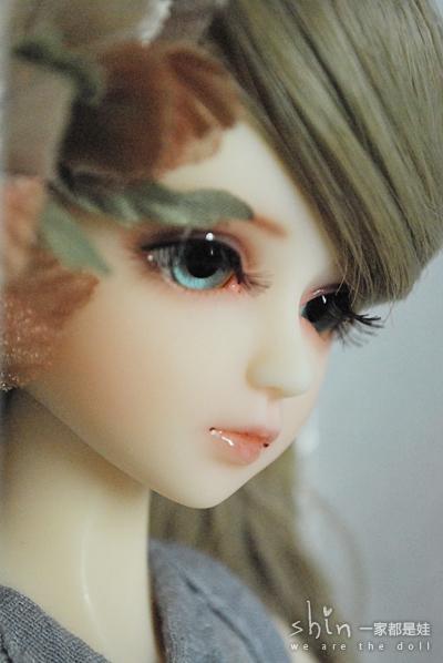 DSC_1509.JPG