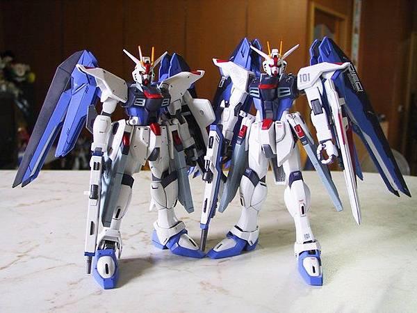 MG  Freedom Gundam