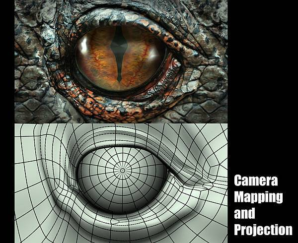 EYE_Cam- Mapping & Projection