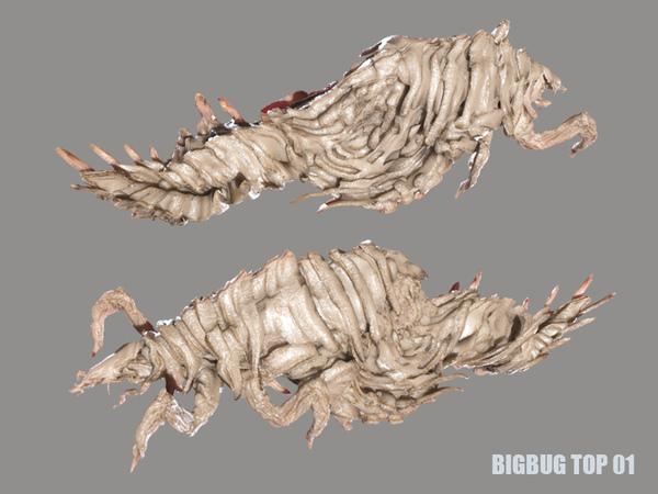 BIGBUG TOP SSS.jpg