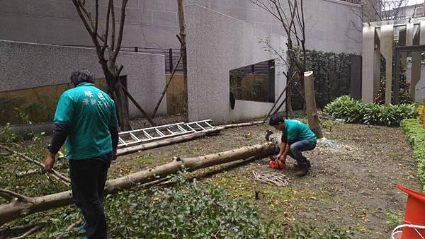 1030421南港太平洋森之丘-中庭景觀改造工程-施工中1.jpg