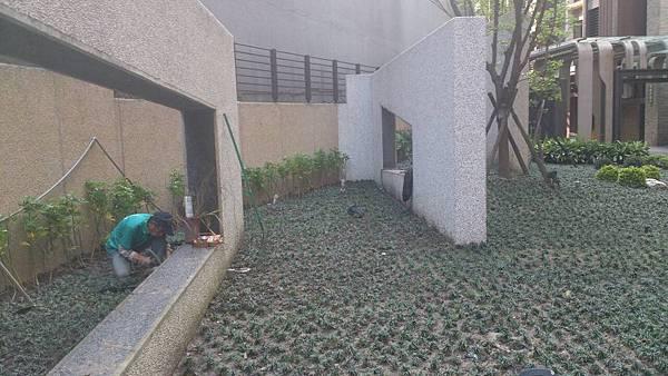 1030421南港太平洋森之丘-中庭景觀改造工程-施工中6.jpg