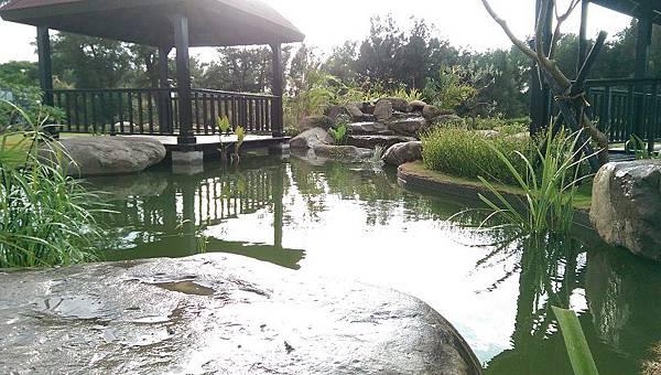 1030805桃園新屋3號咖啡館-水池景觀工程1-完工照.jpg