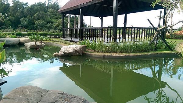 1030805桃園新屋3號咖啡館-庭園景觀工程-完工照5.jpg