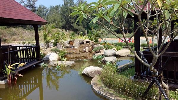 1030805桃園新屋3號咖啡館-庭園景觀工程-完工照3.jpg