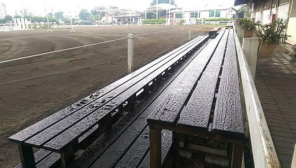 1031018台北漢諾威馬場-木作觀眾看台-完工照2