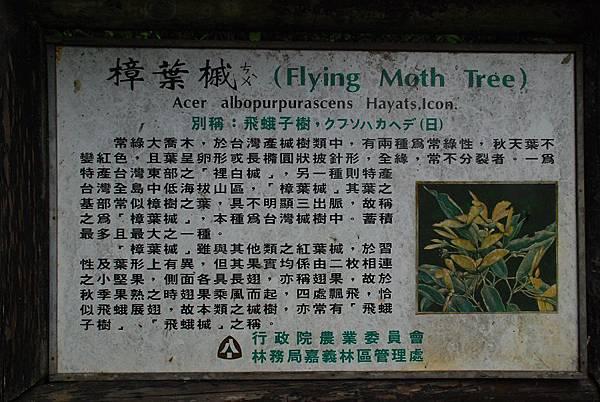 20140406杜仔湖步道走雙子山【台南南青】 0006.jpg