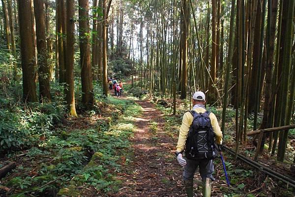 20140406杜仔湖步道走雙子山【台南南青】 0028.jpg