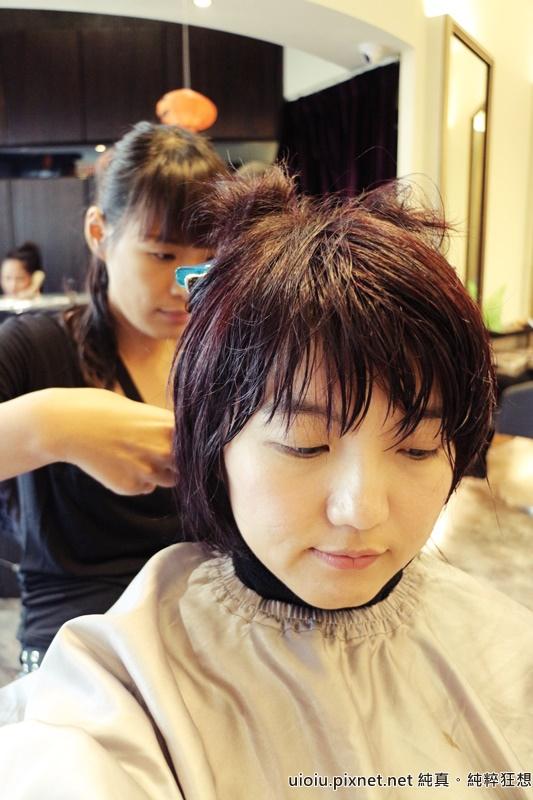 台北 fin 染髮015.JPG