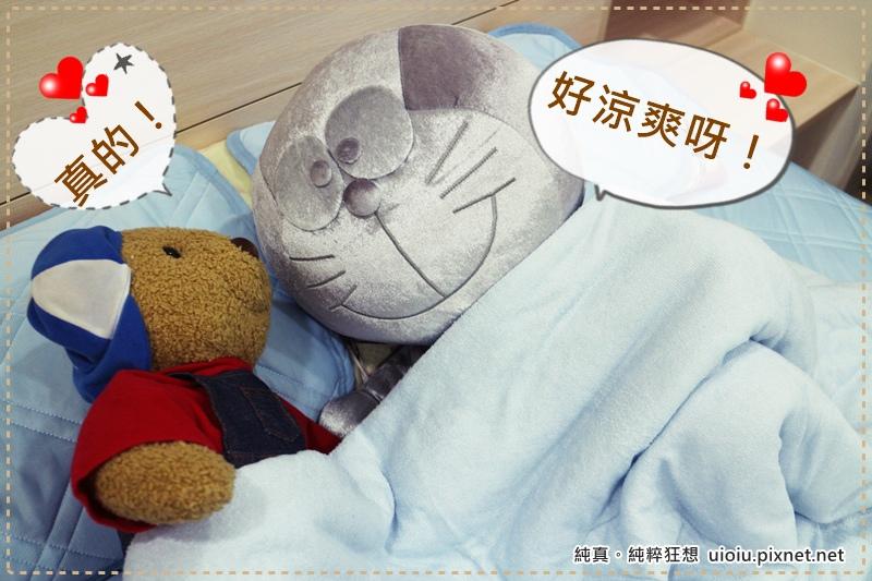 宜得利 N Cool涼被+枕頭保潔墊+床墊保潔墊之寢具組000.JPG