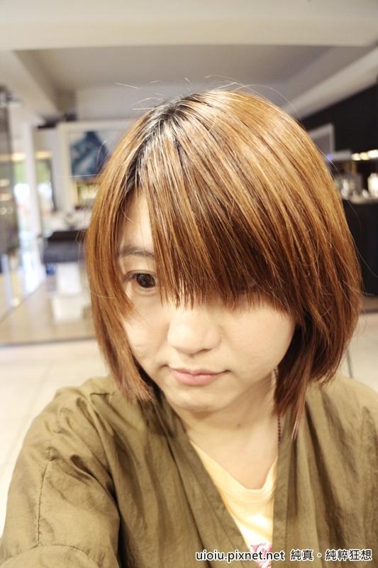 150629 新竹 mooi剪染髮 女003.JPG