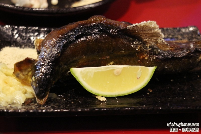 150816 竹北魚魚魚賀屋035.JPG
