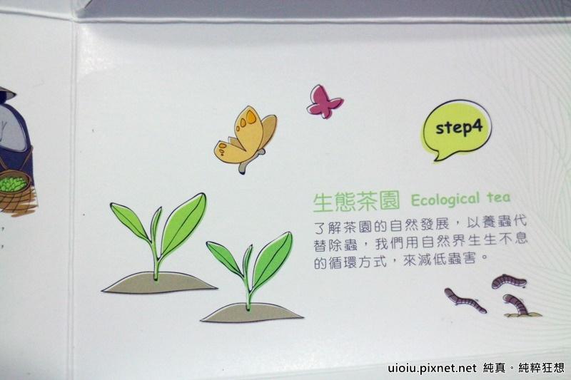 the' vie玉蘭花烏龍茶010.JPG