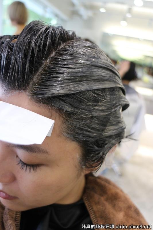 Glitz Hair018.JPG
