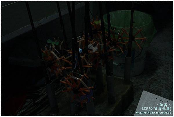 10澎湖行day1-82.JPG