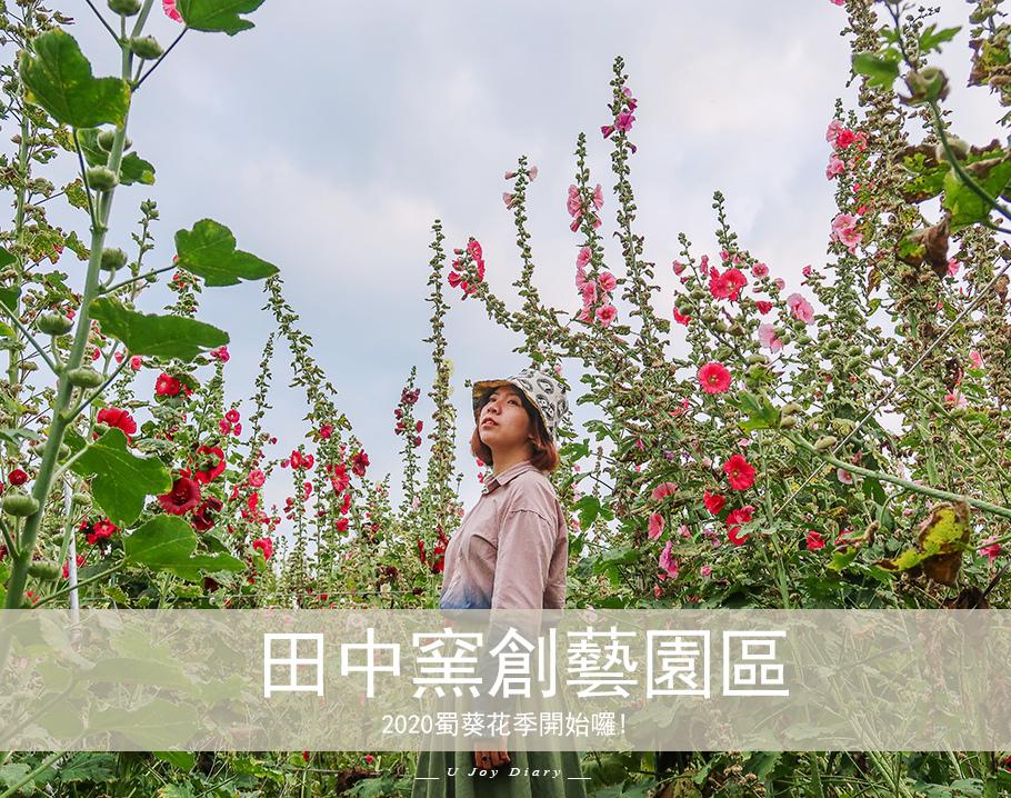 2020蜀葵花 (1).jpg
