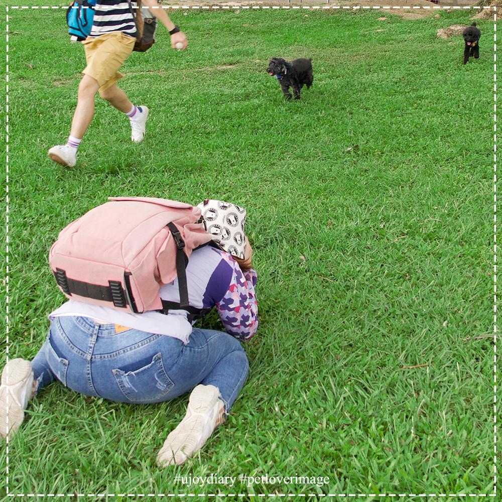 寵物寫真 (10).jpg