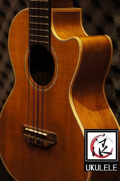 阿浪老師烏克麗麗-美國品牌KALA-KOA相思木缺角8弦烏克_001.jpg