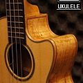 阿浪老師烏克麗麗-美國品牌KALA-玫紋楓木全單板高級琴_005.jpg