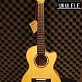 阿浪老師烏克麗麗-美國品牌KALA-玫紋楓木全單板高級琴_007.jpg