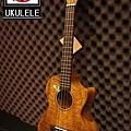阿浪老師烏克麗麗美國品牌KALA-芒果木全單板高級琴.jpg