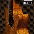 阿浪老師烏克麗麗美國品牌KALA-芒果木全單板高級琴_002.jpg