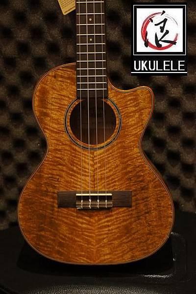 阿浪老師烏克麗麗美國品牌KALA-芒果木全單板高級琴_005.jpg