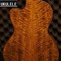 阿浪老師烏克麗麗美國品牌KALA-芒果木全單板高級琴_003.jpg