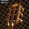 阿浪老師烏克麗麗-美國品牌KALA-可插電六弦烏克_002.jpg