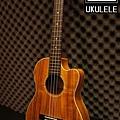 阿浪老師烏克麗麗-美國品牌KALA-想思木全單板30吋缺…_002.jpg