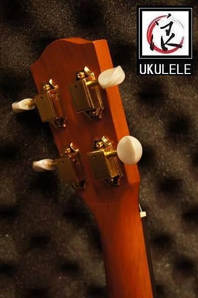 阿浪老師烏克麗麗台灣品牌KOYAMA-雙色指板全單插電烏克_006.jpg