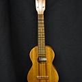 阿浪老師烏克麗麗ukulele專賣店1.jpg