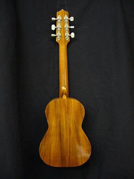 阿浪老師烏克麗麗ukulele專賣店4.jpg