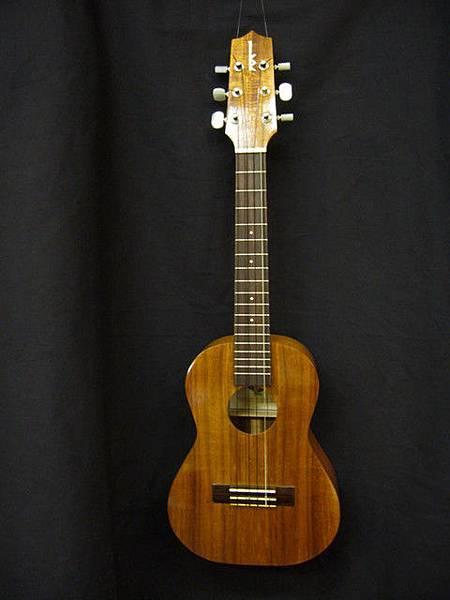 阿浪老師烏克麗麗ukulele專賣店-1.jpg