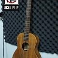 阿浪老師烏克麗麗ukulele專賣店-全單板相思木.jpg