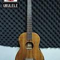 阿浪老師烏克麗麗ukulele專賣店-面板.jpg