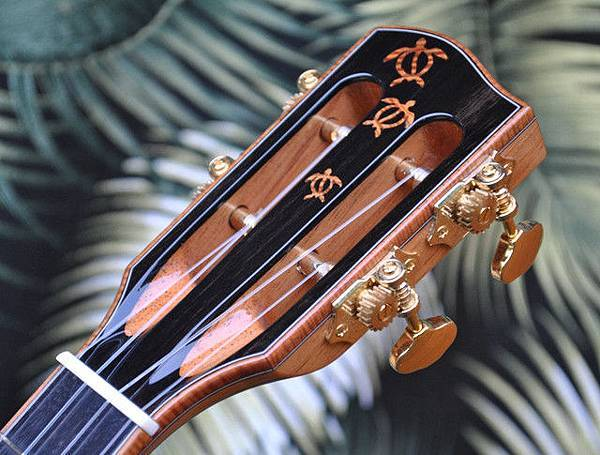 阿浪老師烏克麗麗-來自夏威夷.全世界最美麗的手工琴…_000.jpg